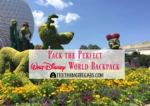 Pack the Perfect Walt Disney World Backpack