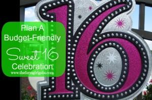 Planning a Budget-Friendly Sweet 16 Celebration!