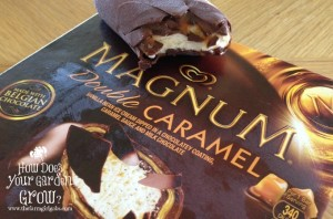 Product Review: Magnum Double Caramel Bars #icecreamstockup