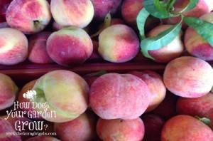 Russo's Peaches