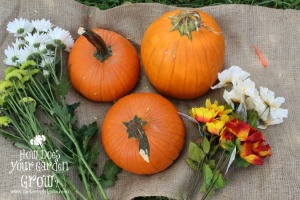 Flower Pumpkin Supplies