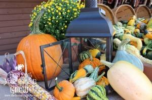 lantern with pumpkins