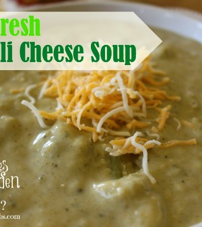 Farm Fresh Broccoli Cheese Soup