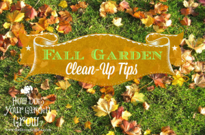 10 Fall Garden Clean-Up Tips