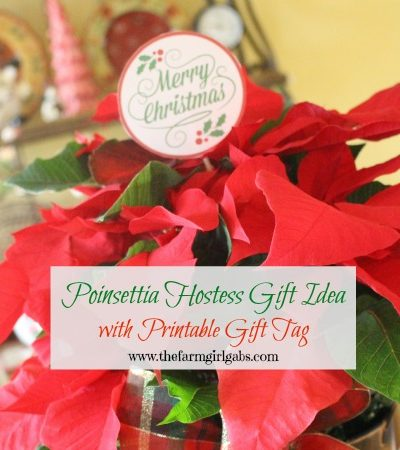Poinsettia Hostess Gift Idea with Printable Gift Tag.