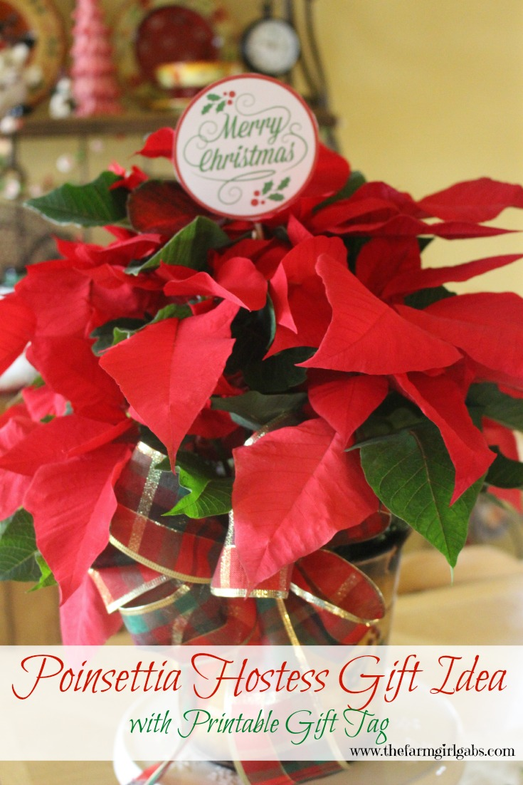Poinsettia Hostess Gift Idea with a FREE printable Gift Tag. Poinsettias make perfect gifts for