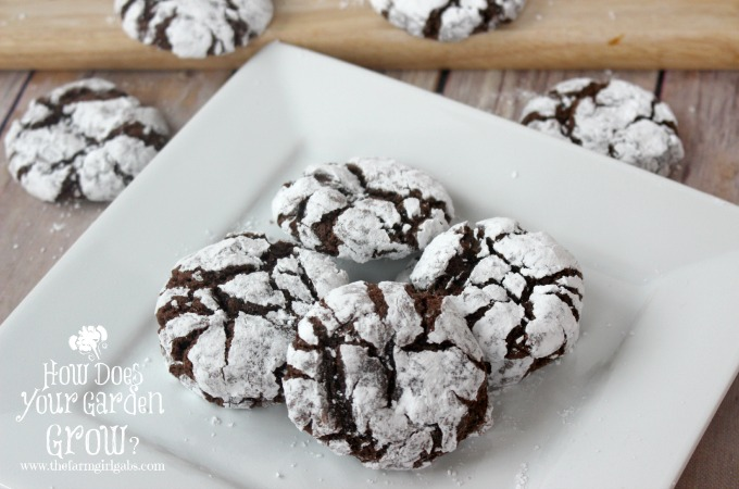 Spiked Spiced Chocolate Crinkle Cookies - Feature 1