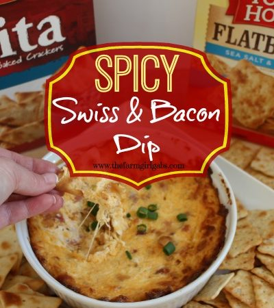 Spicy Swiss & Bacon Dip
