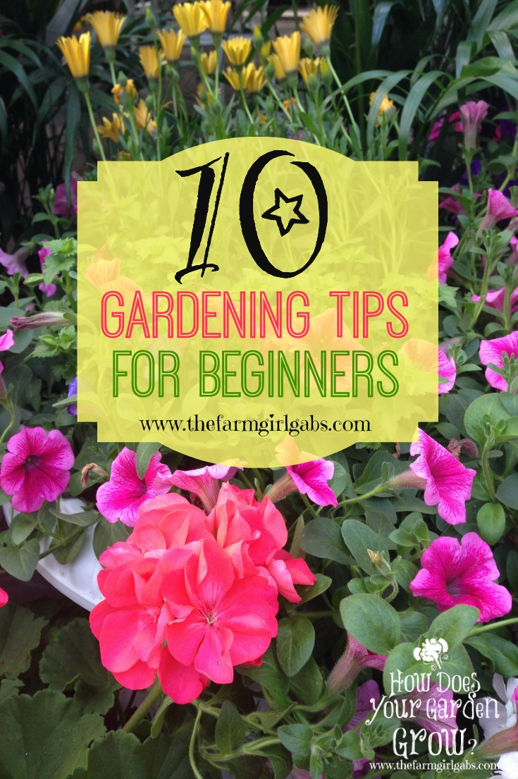 10 gardening tips for beginners the farm girl gabs for Gardening tips