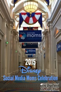 Recap of the invitation-only 2015 Disney Social Media Moms Celebration at the Walt Disney World Resort. #DisneySMMC #DisneySide