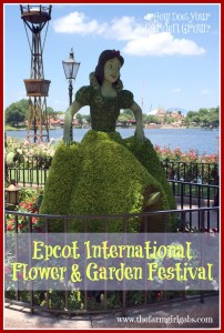 Reflections from the Epcot International Flower & Garden Festival in Walt Disney World. #DisneySide #DisneySMMC