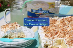 Toasted Coconut Ice Cream Delight