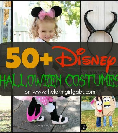 50+ Disney Halloween Costumes As Seen On www.thefarmgirlgabs.com