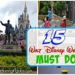15 Fun Things To Do At Walt Disney World