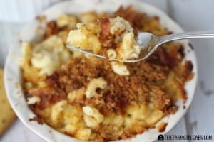 Bacon Cauliflower Macaroni And Cheese