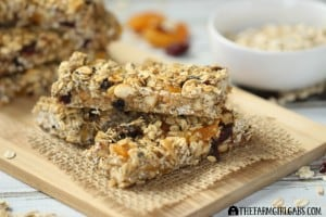 Power-Packed Fruit & Nut Energy Bars