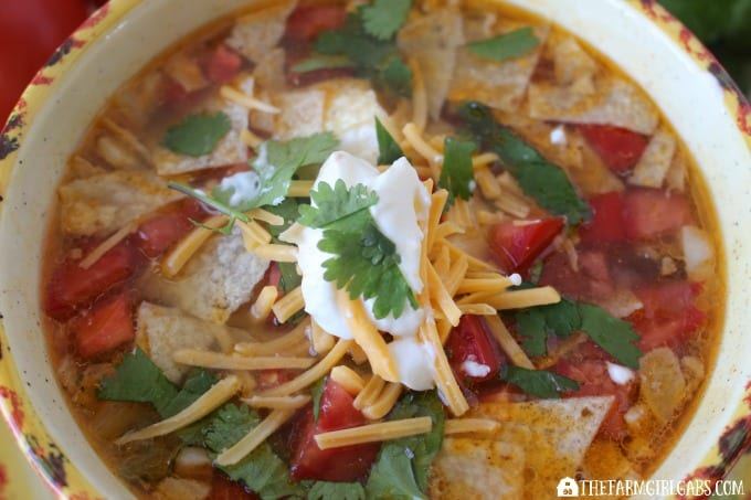 This zesty Chicken Tortilla Soup has just enough zing to warm you up on a cold day.