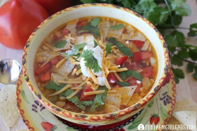 Chicken Tortilla Soup Feature 2