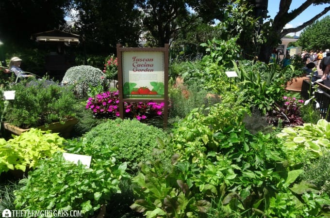 2016 Epcot® International Flower & Garden Festival - 10