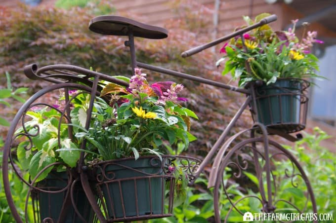 Container Gardening 101: Tips and Tricks For Growing The Most Beautiful Planters On The Block