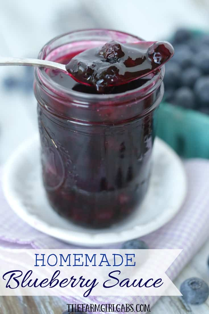 Homemade Blueberry Sauce - The Farm Girl Gabs®