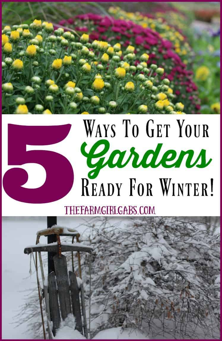5 Ways To Get Your Gardens Ready For Winter. Follow these simple gardening tips on how to put your gardens to bed for the winter so your spring garden will thrive.