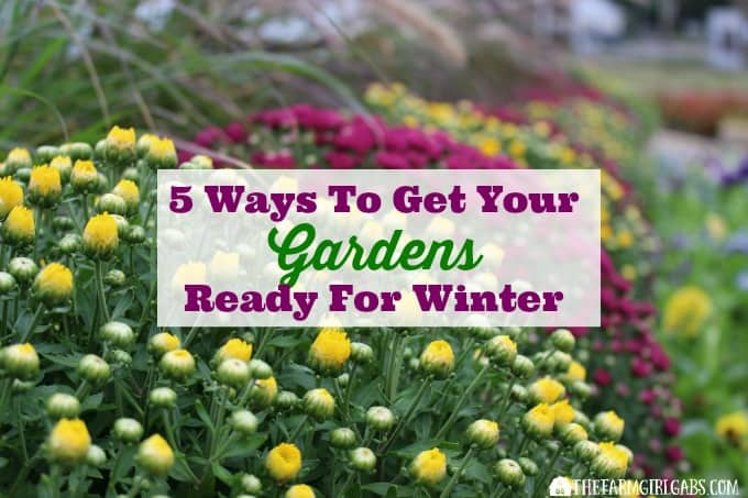 5 Ways To Get Your Gardens Ready For Winter