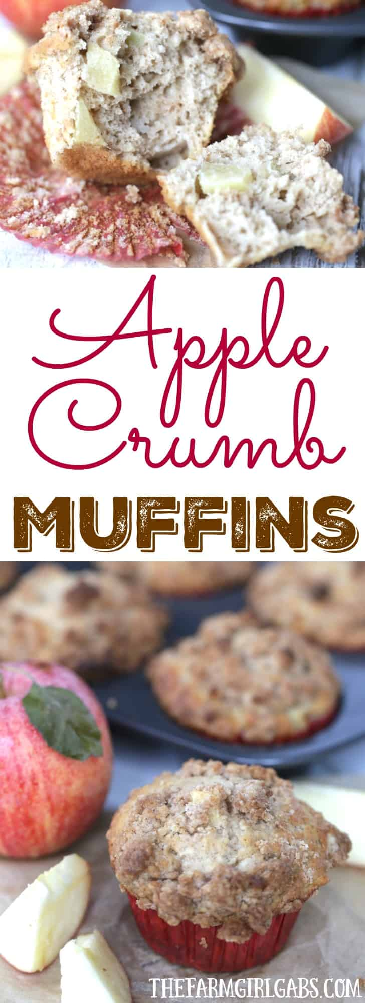My family proclaimed these the BEST Apple Crumb Muffins ever. This recipe is filled with lots of sweet apples and topped with a buttery cinnamon and brown sugar topping.