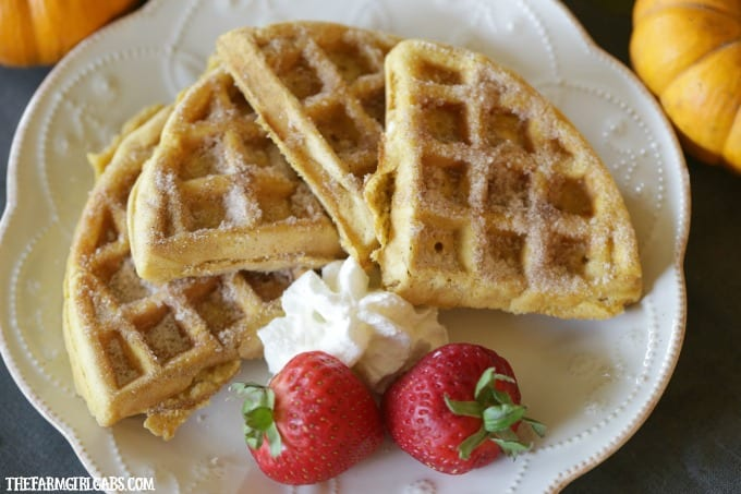 Start your morning with these delicious Cinnamon Sugar Pumpkin Waffles. This breakfast recipe is so simple to make!