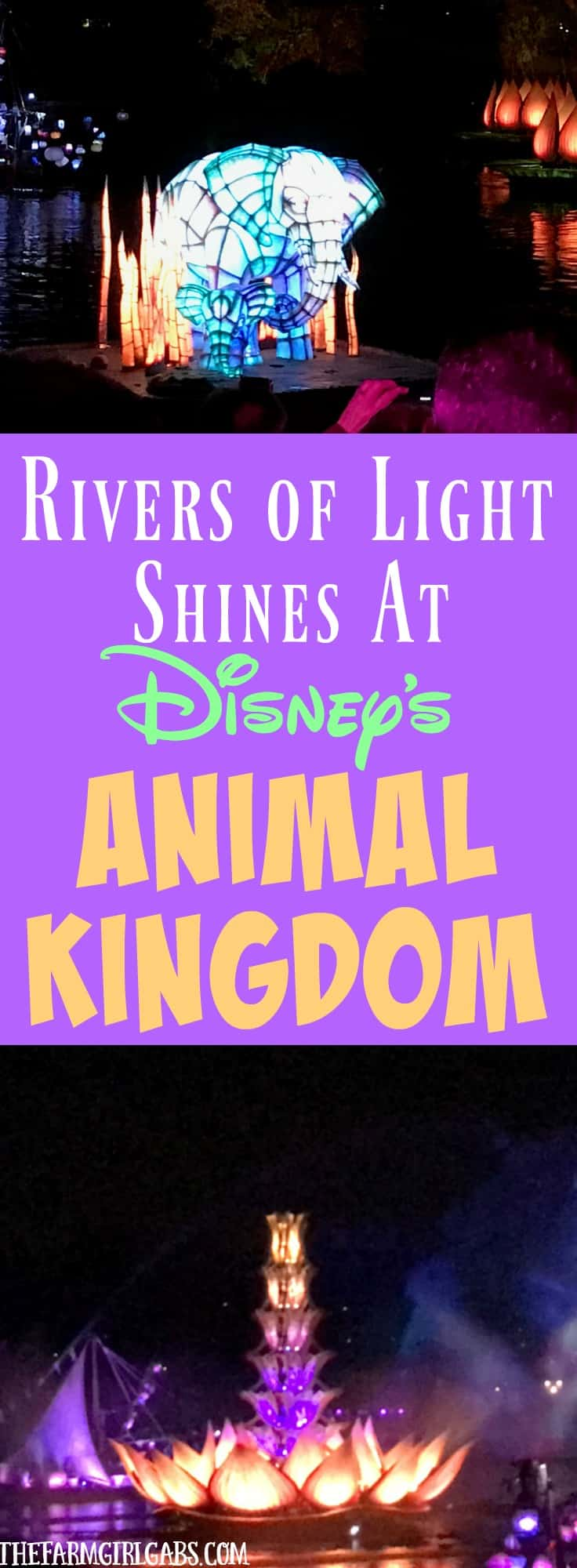 Rivers of Light Shines Bright At Animal Kingdom. This nighttime show at Walt Disney World embraces the magic of nature. #DisneySMMC