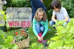 Cultivate some family fun with these 5 Tips For Gardening With Kids.