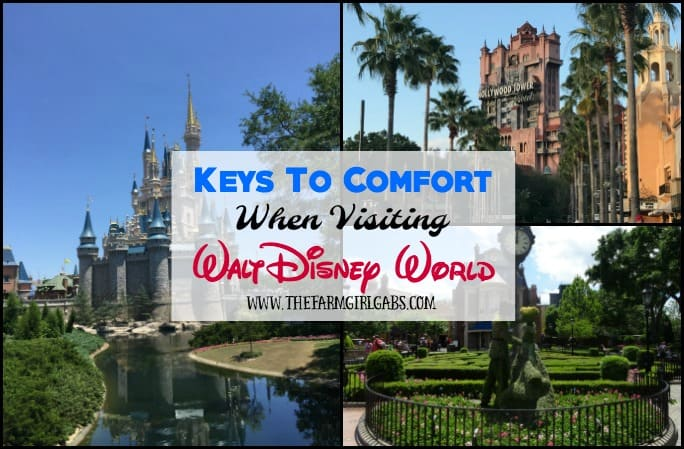 Keys To Comfort When Visiting Walt Disney World