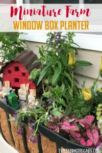 Brighten up your gardening landscape with this DIY Miniature Farm Window Box Planter idea. {Ad} #ForWhatMattersMost