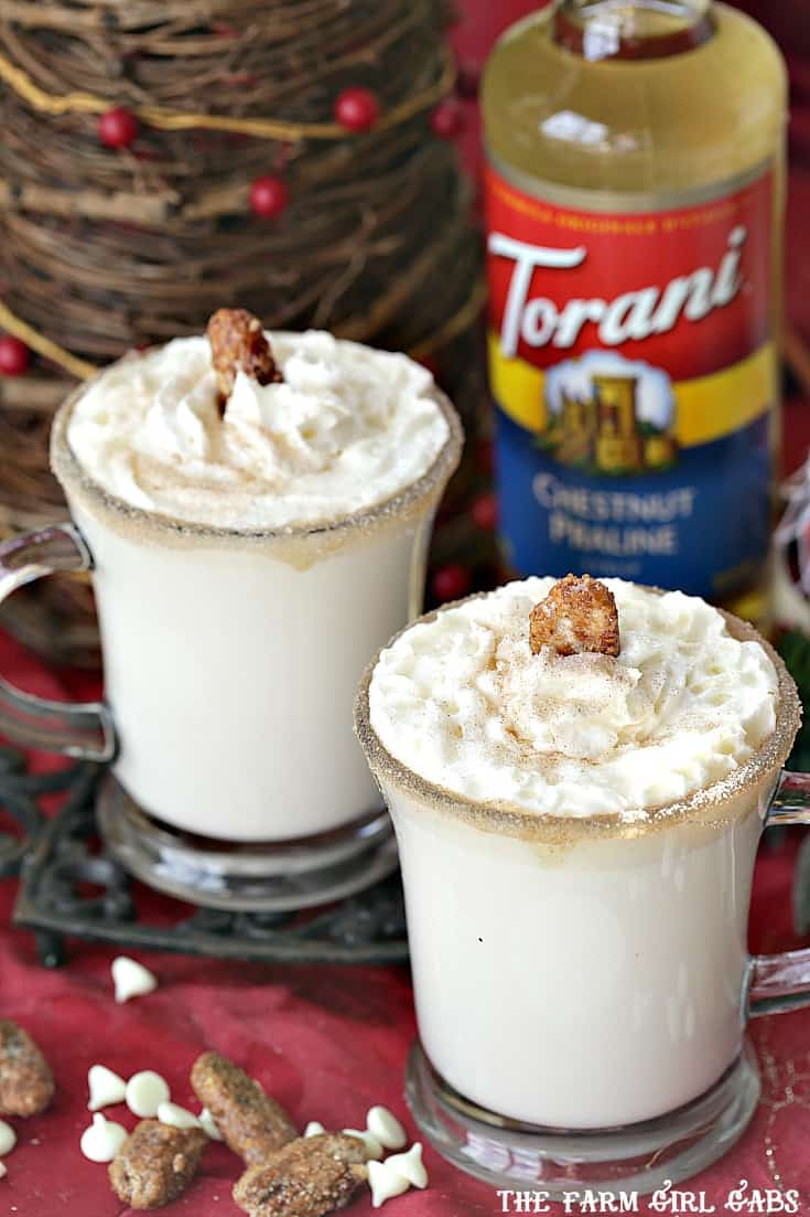 Warm up your White Christmas with a mug of Chestnut Praline White Hot Chocolate. Save money by making your own drink recipes at home using Torani Syrups!