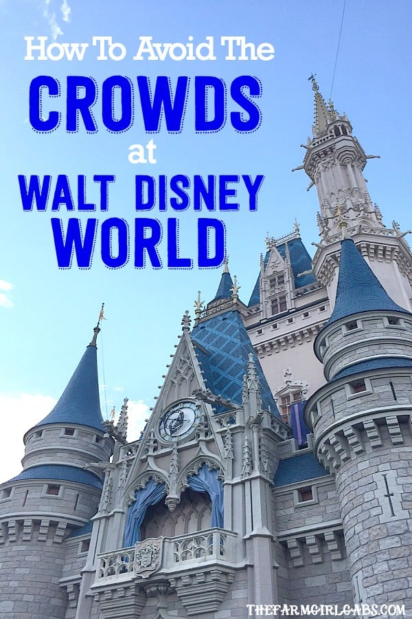A packed Disney Park can sometimes lead to an unmagical experience. Here is How to Avoid the Crowds At Walt Disney World. #WaltDisneyWorld #DisneySide #FamilyTravel #Disney #Disneyland #DisneyTips
