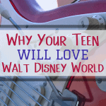 Why Your Teen Will Love Walt Disney World