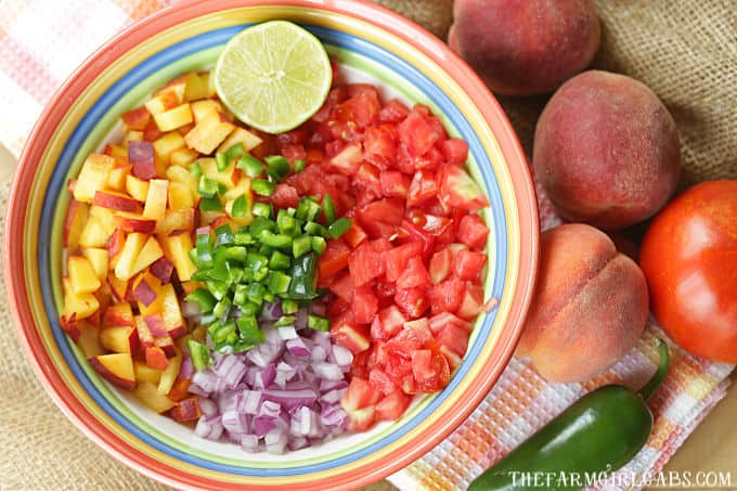 Spice up your summer with this tastyPeach Pico de Gallo recipe. Grab those fresh farmers market peaches and whip up a bowl to snack on. #Peach #PicodeGallo #Salsa #PeachRecipe #Appetizer #Dips #DipRecipe #Farmersmarket