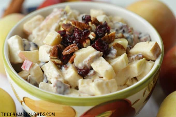 This Apple Cranberry Fruit Salad recipe is the perfect fall dessert. Apples, craisins and pecans pair up to create this delicious creamy fruit salad recipe.