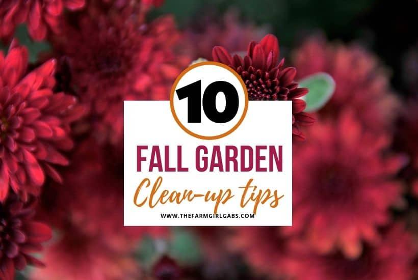10 Fall Garden Clean Up Tips Www Thefarmgirlgabs Com