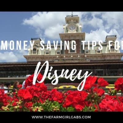 It truly is a magical place but visiting Walt Disney World can put a serious dent in your wallet. Here are some Money Saving Tips For Walt Disney World.