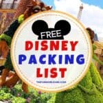 Free Walt Disney World Packing List