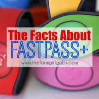 Everything You Need To Know About Fastpass+ at Walt Disney World