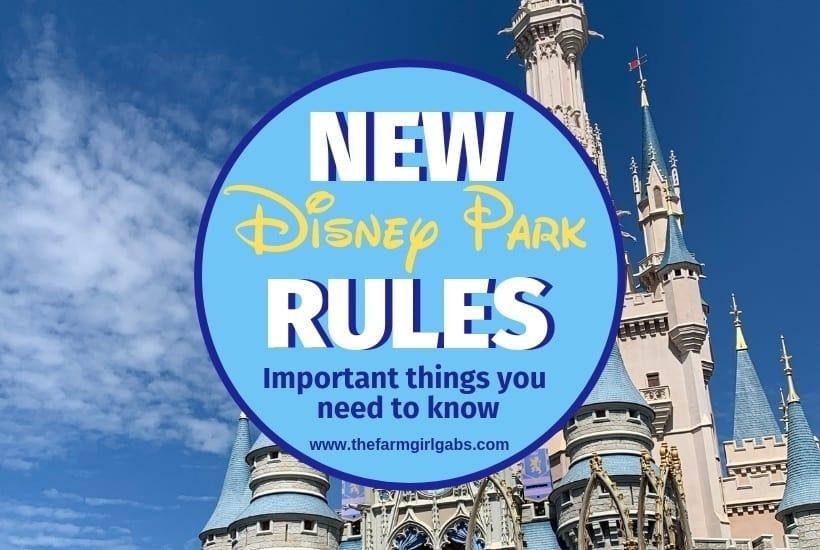 Disney Park Bans Coming to Disneyland Resort and Walt Disney World