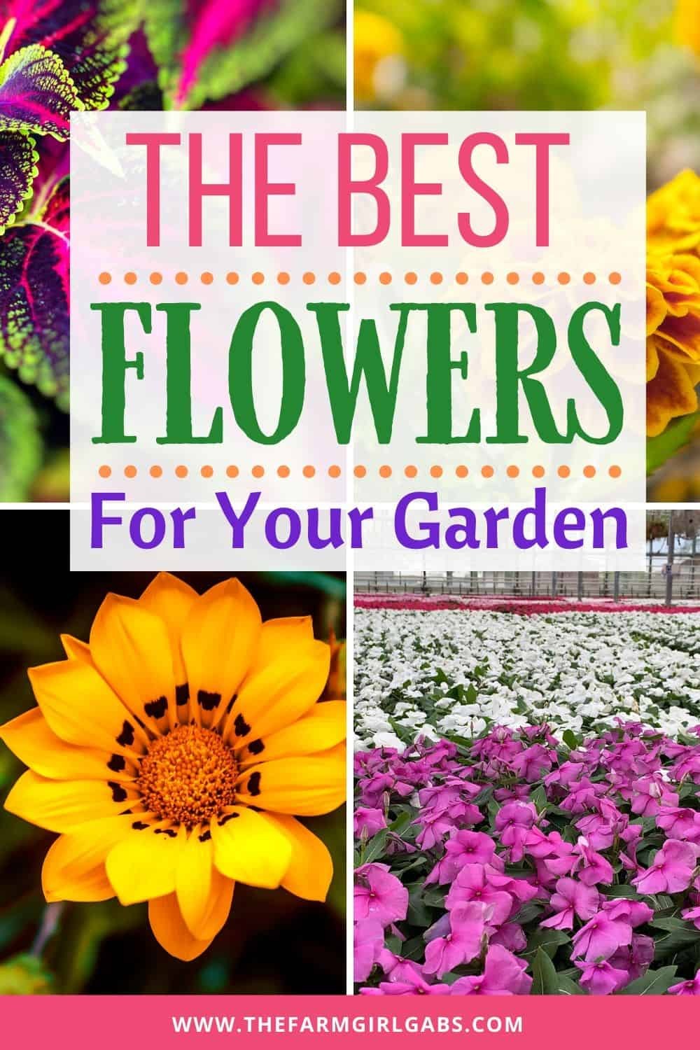Get your gardens growing. Celebrate spring with these helpful gardening tips. Here is the Ultimate List of Popular Flowers for your Flower Garden. #Gardeningtips #Gardening #Flowers #SpringGardening #FlowerGarden