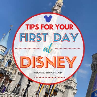 What should you do On your first day at Disney World? Take some time to enjoy these enjoyable and relaxing must-do experiences.