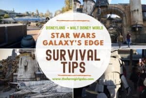 Galaxy's Edge Plans: Survival Tips For Your Next Disney Trip