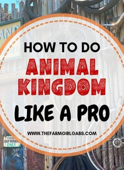 The Best tips for visiting Animal Kingdom. Follow these Animal Kingdom pro tips to plan you day at the park like an expert.