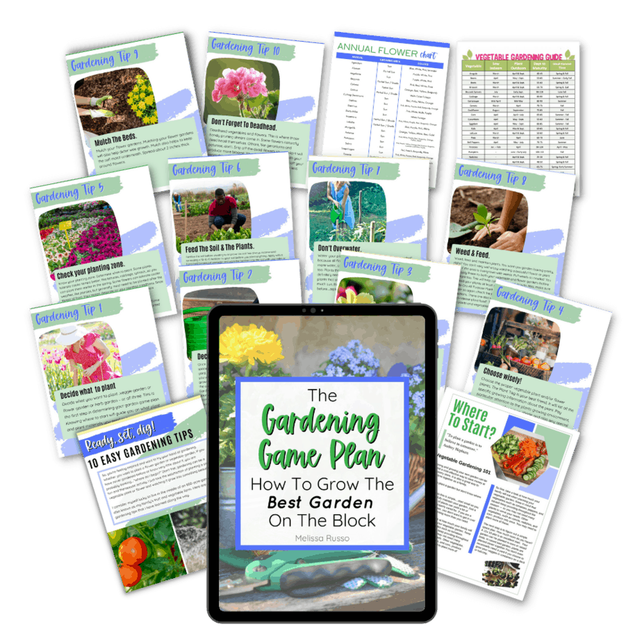 Gardening for beginners ebook