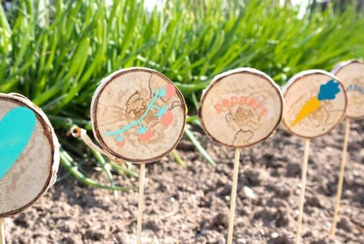 DIY Wood Slice Garden Markers with Cricut Joy