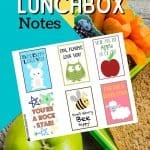 Brighten your child's school day by including one of these adorable free Printable Lunch Box Notes Back to School in their lunch. These lunch box printables will definitely make your child happy.